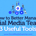 How to Better Manage Social Media Teams: 3 Useful Tools
