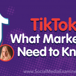 TikTok: What Marketers Need to Know