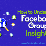 How to Understand Facebook Group Insights